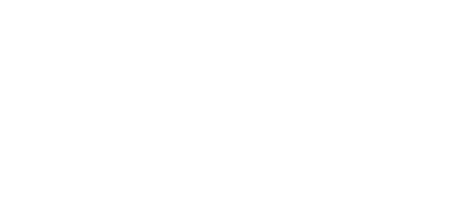 Charles Lesur